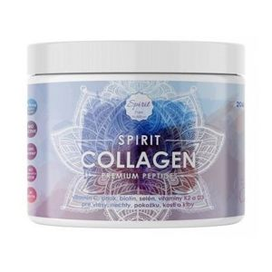 Collagen - Spirit 206-207 g Malina